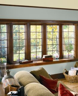 CompositWood Windows